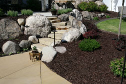 landscaped patios and walkways
